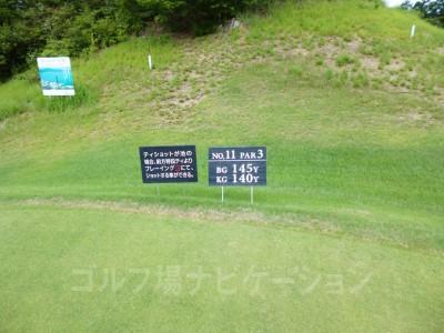 瀬田ゴルフコース北コース11番ショートホール、レギュラーティ
