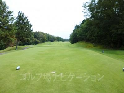 瀬田ゴルフコース北コース12 番ホール レギュラーティからの眺め。打ち出しが狭く見えます。