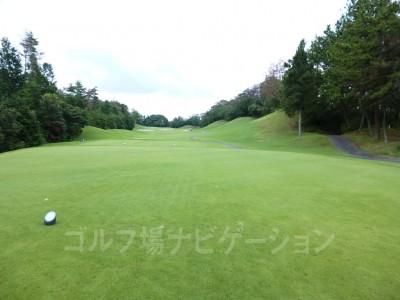 瀬田ゴルフコース北コース13番ホール、レギュラーティからの眺め