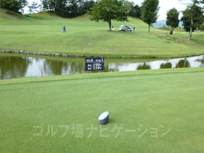 瀬田ゴルフコース北コース6番ショートホール、レギュラーティ