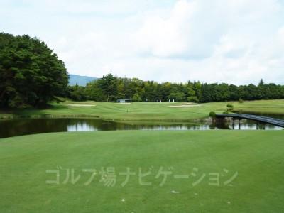池が手前と右サイドに広がっています。