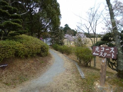 道を越えて少し山道を進むと光コース
