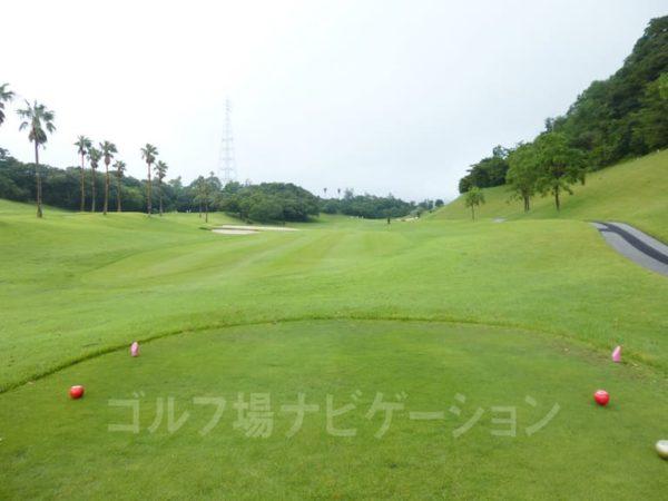 Kochi黒潮カントリークラブ 太平洋コース 8番ホール レディースティ