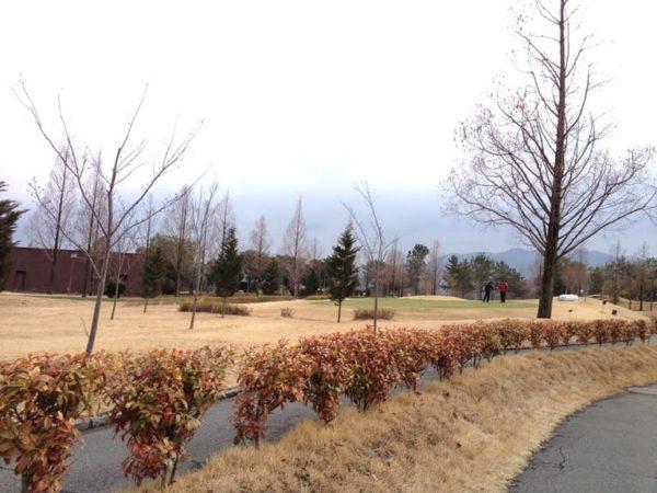 ロータリーゴルフ倶楽部 練習場 練習グリーン
