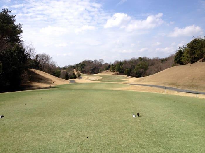 東条パインバレーゴルフクラブ(旧:タイガースGC) INコース