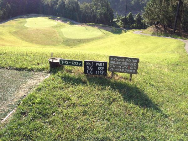 亀岡ゴルフクラブ 3番 ショートホール レディースティ
